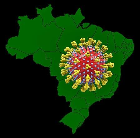 Left or right brasil